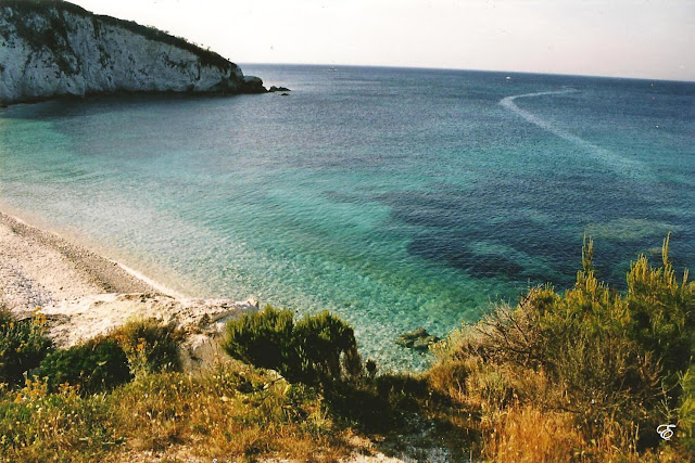 Migliori spiagge dell'Isola d'Elba